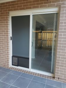 doggy-doors-installed-in-security-door-by-JHS