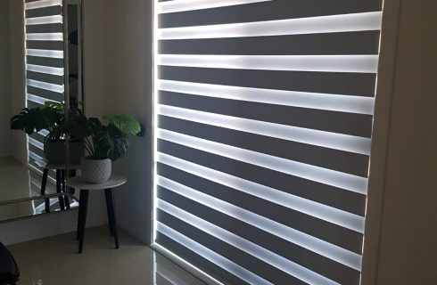 Zebra_Blinds
